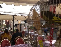 Pizza restaurant with a caged bird, main square