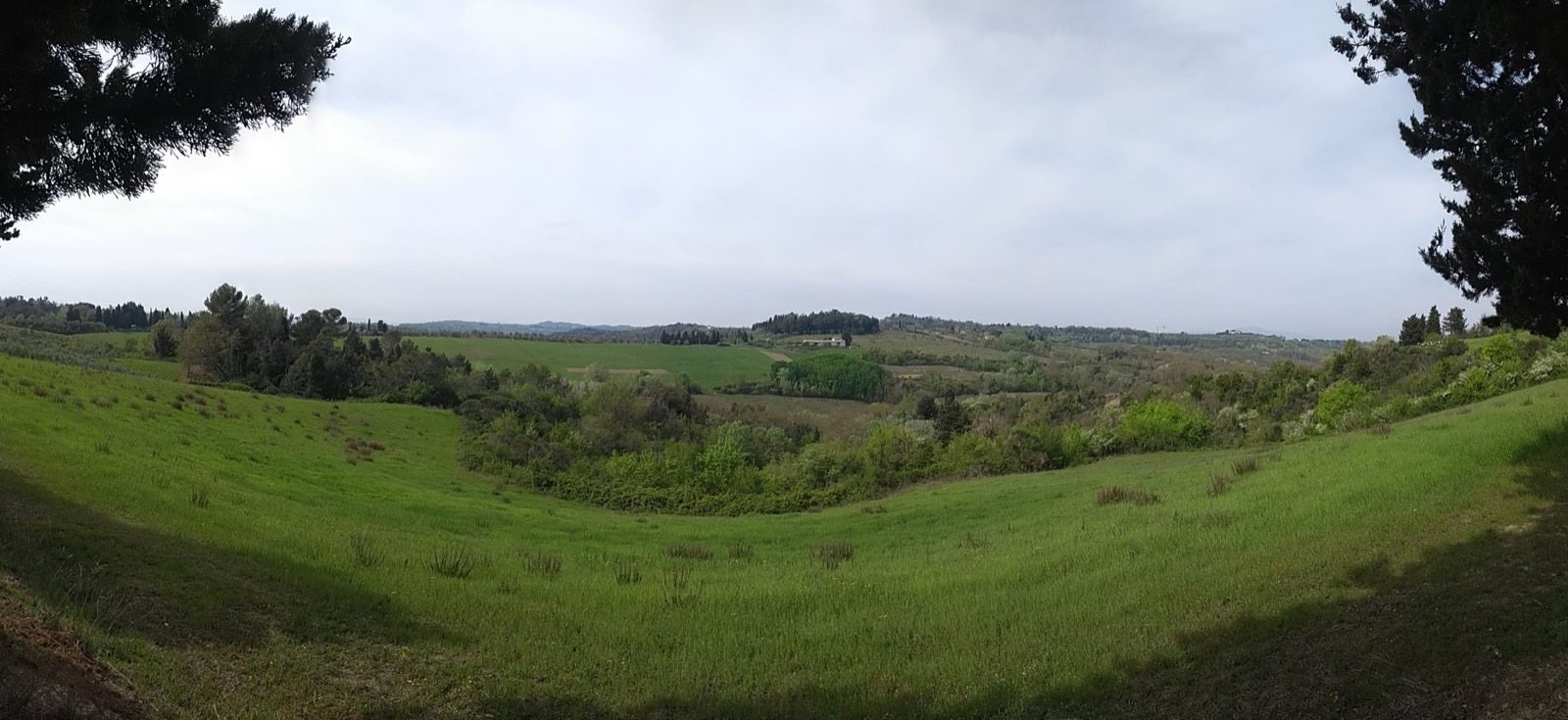 Panorama of Tuscan countryside - green fields and trees