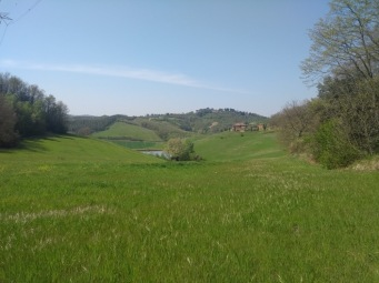 The panorama view, green grass leading toward rolling low hills in the distance.