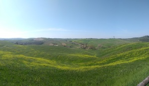 Rolling hills, farmhouses in the distance, green and yellow landscape