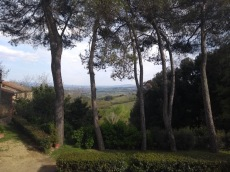View through trees over distant hills, from Ostello Sigerico
