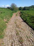 Cobbled road leads into a dirt track through a green field
