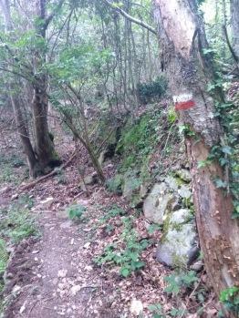 Heading downhill, spotting a VF marker
