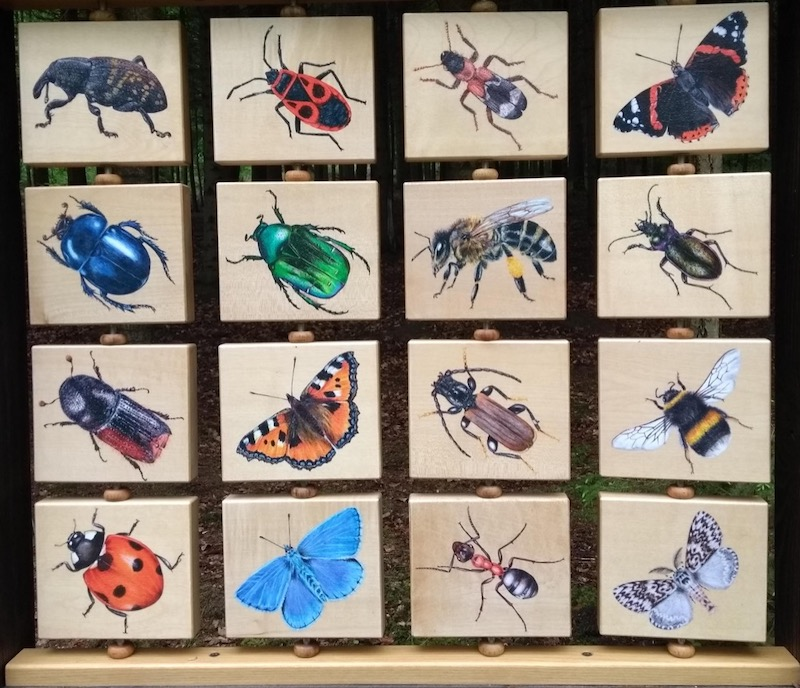 Colourful information board, illustrating local insects