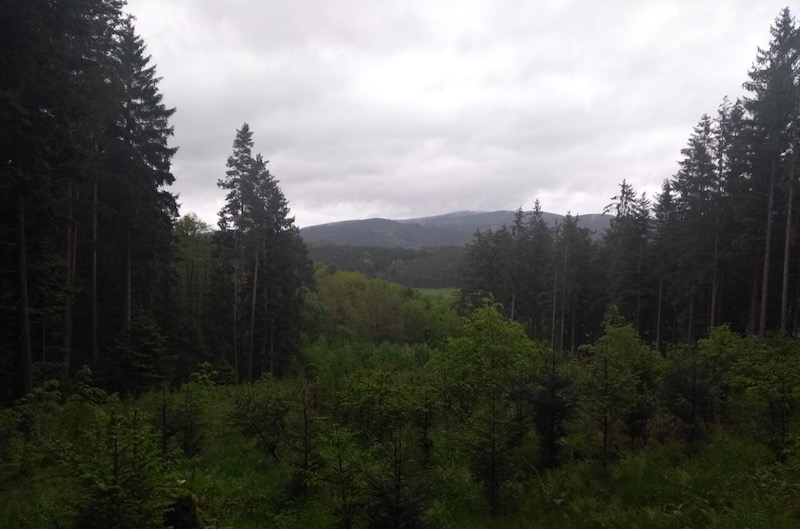 View. Hills in the distance, entirely green in the foreground, trees and fields everywhere.