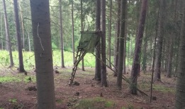 Small bird-watching hide in the woods, made of thin sticks with a green cover