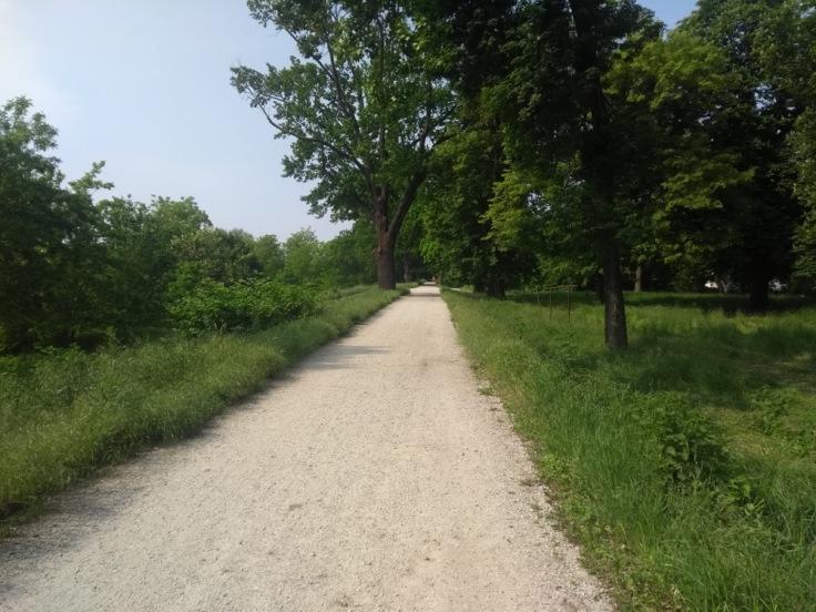 Wroclaw parkrun terrain - a wide, flat path