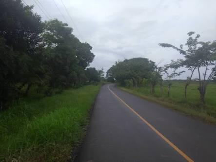 Road heading through fields to the beach