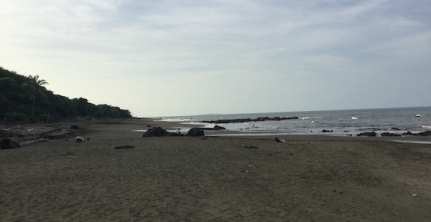 Beach panorama looking out onto Pacific Ocean