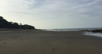 Sandy beach, wide and empty