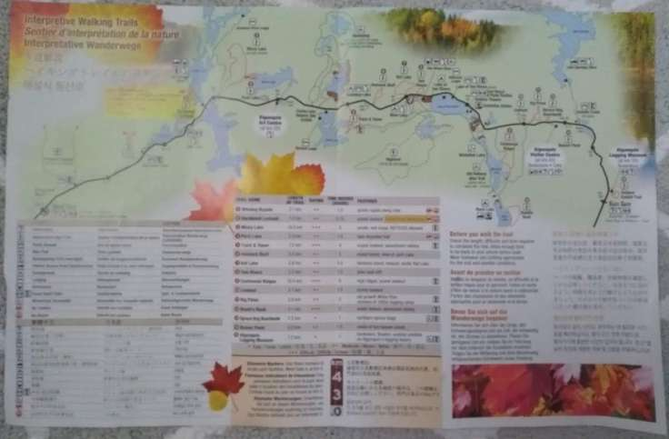 Algonquin trail map