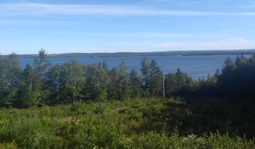 View over trees of Bras d'Or lake