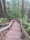 Wooden steps heading down from the lookout loop