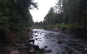 A view downriver
