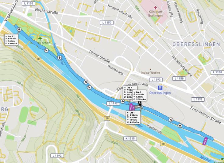 Neckarufer parkrun route
