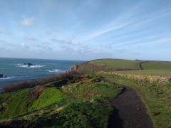 South West Coastal path, sea and cliffs to the left, fields to the left.