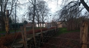 Fence looking over to University buildings