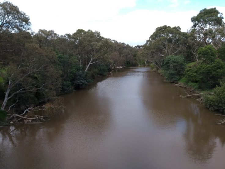 View of a brown river from the bridge